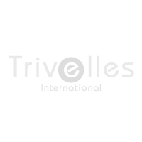 Trivelles International logo